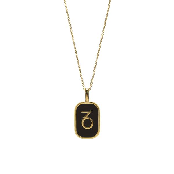 Capricorn enamel Necklace