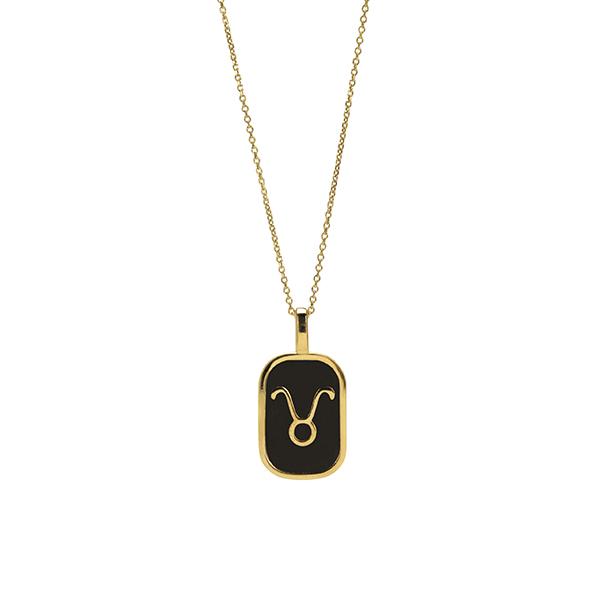 Taurus enamel Necklace